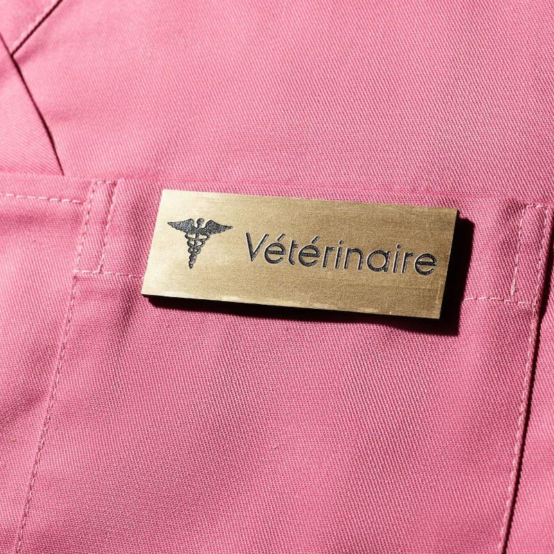 Badge Médical Or | Badge magnétique de Vétérinaire | Express 24H